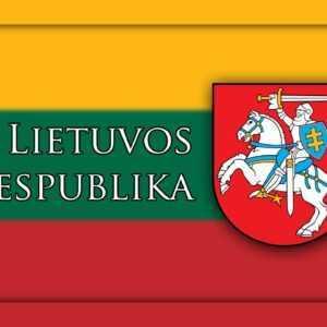 Товары с литовской символикой